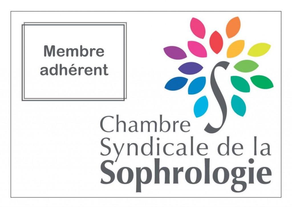 logo chambre syndicale des sopro adhérent